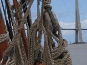 armada-2008-138