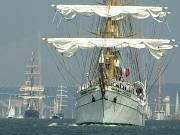 houri-parade-armada-4